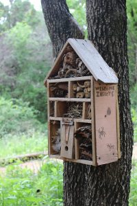 a bug hotel attached to a tree