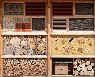close up of materials used in a insect hotel, bug hotel