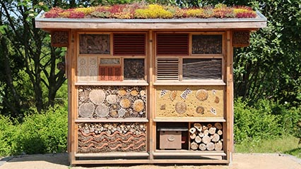 How To Make And Build A Bug Hotel, Insect Hotel – Easy to follow guide