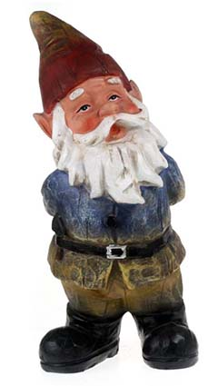 Traditional Curious Gnome