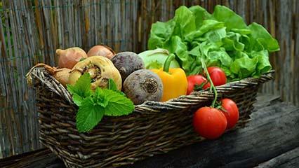 homegrown garden vegetables