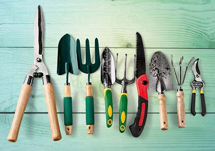 Essential Gardening Tools That You Should Have