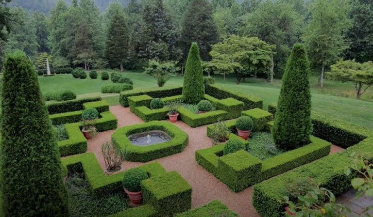 First Thing To Do When Designing A Garden